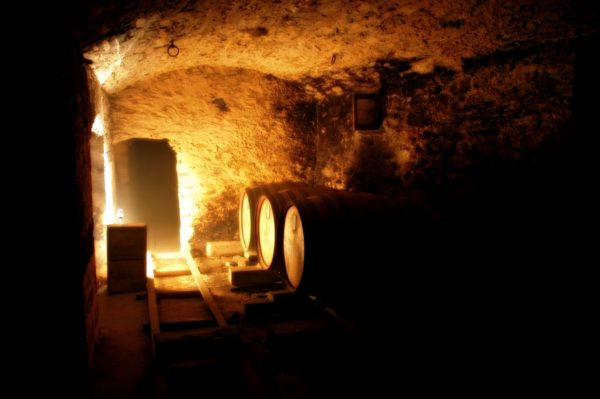 Glass of wine sits in front of maturation casks in underground cellar